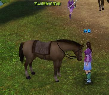 九阴真经马匹如何获得?如何上马?