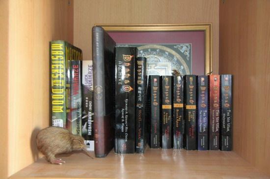 暗黑系列官方小說收集整理介紹