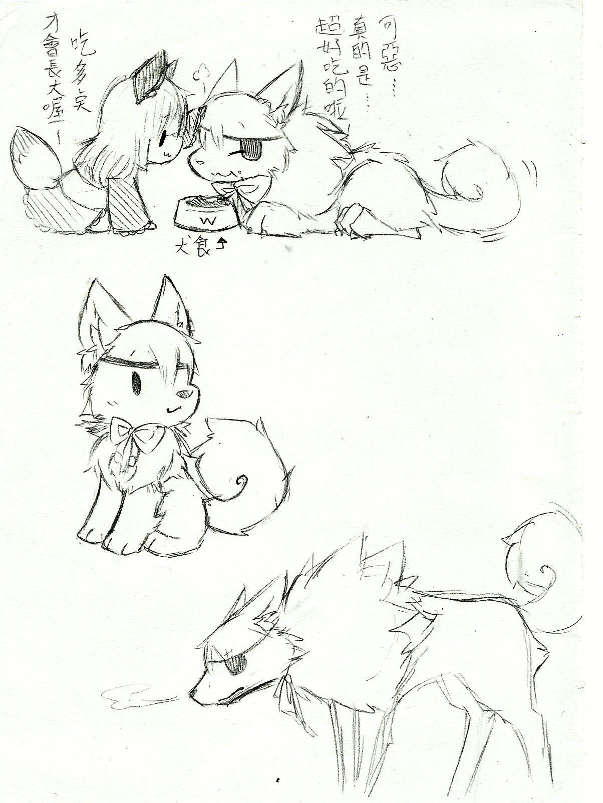 狼画画步骤
