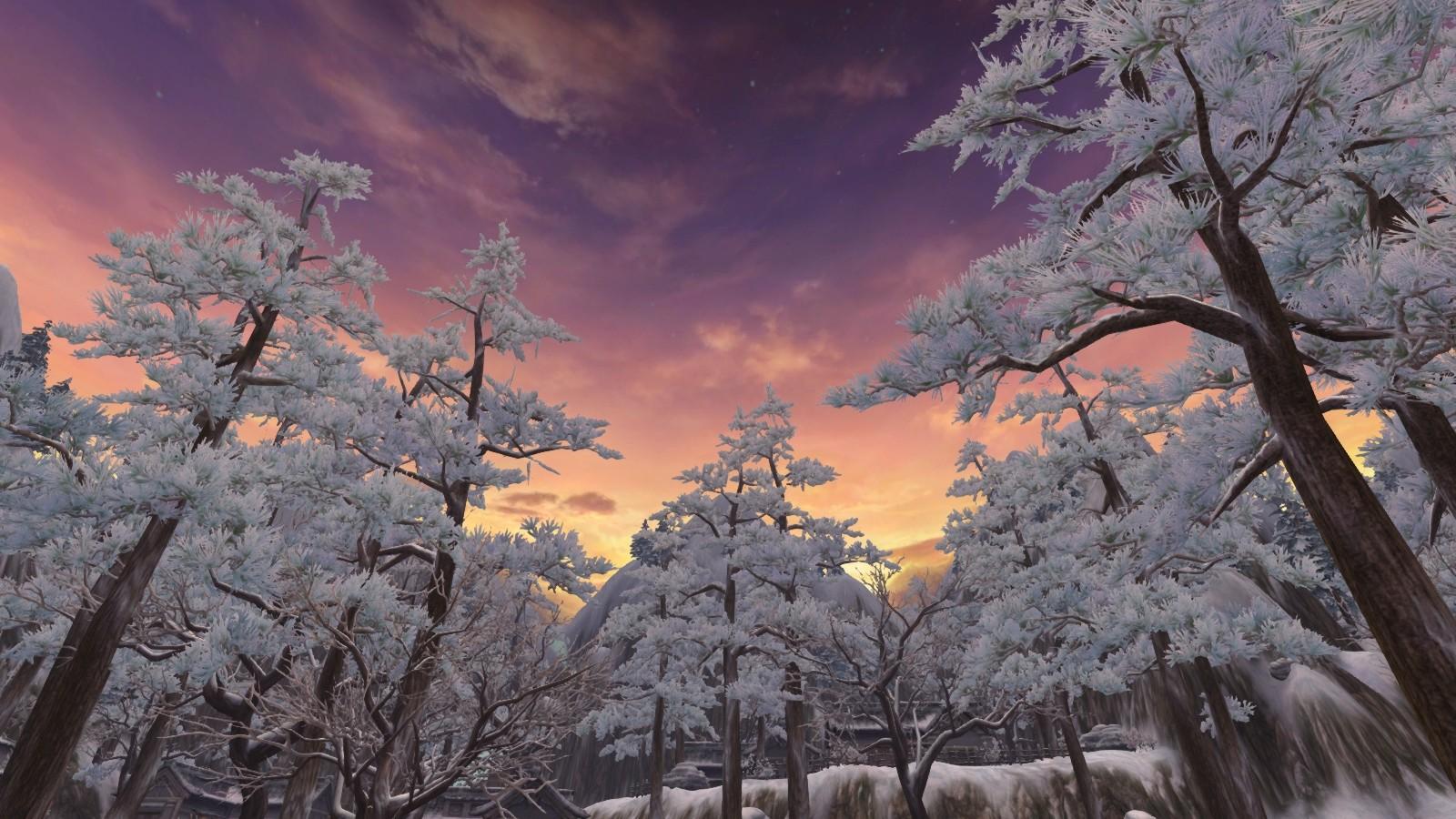 02夕陽西下,嫣紅的天空讓結霜的樹林別有一番風味